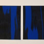 Blue Ghosts, 20''x50''